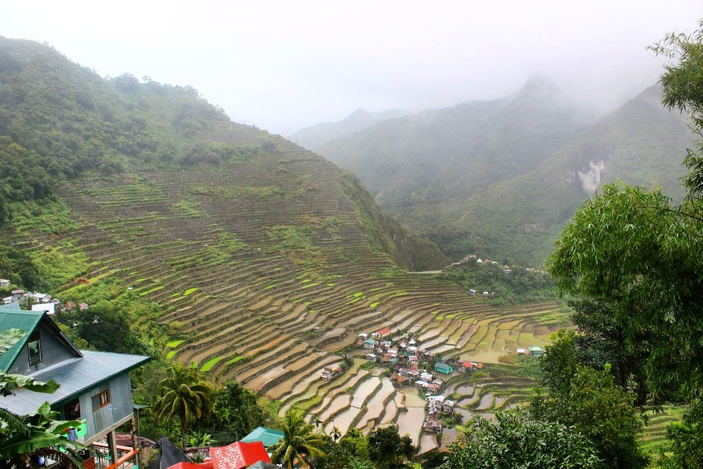 Batad Rice Fields