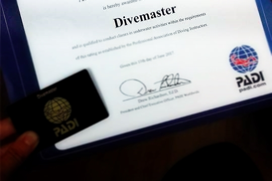 PADI Divemaster Qualification