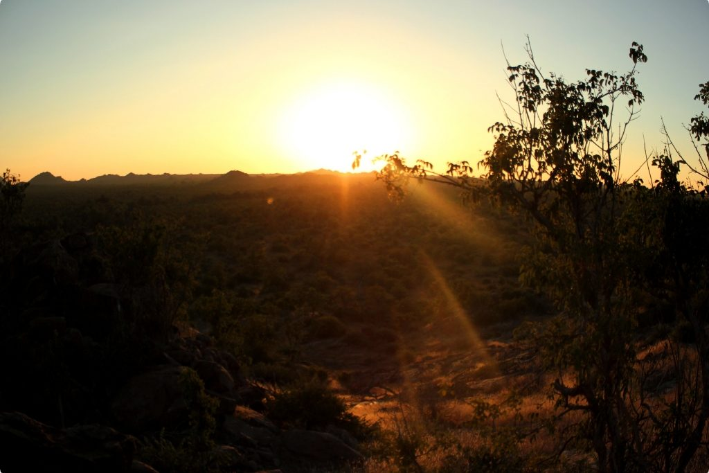 African Sunset In The Bush