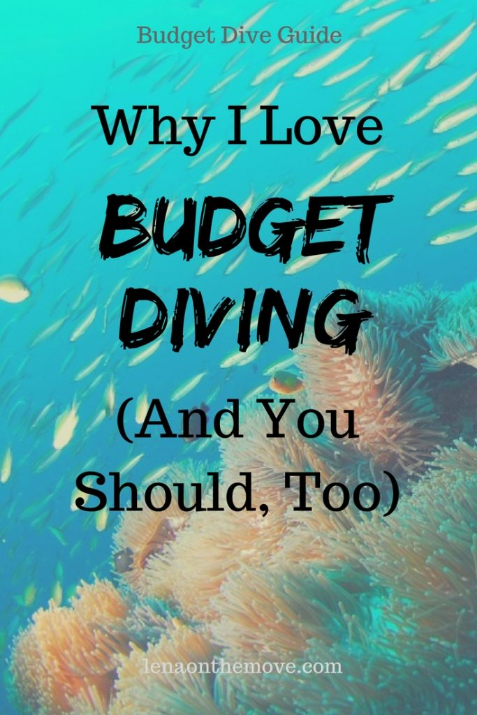 Why I Love Budget Diving (And You Should, Too)