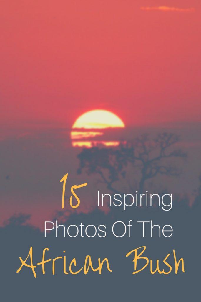 15 Inspiring Photos Of The African Bush