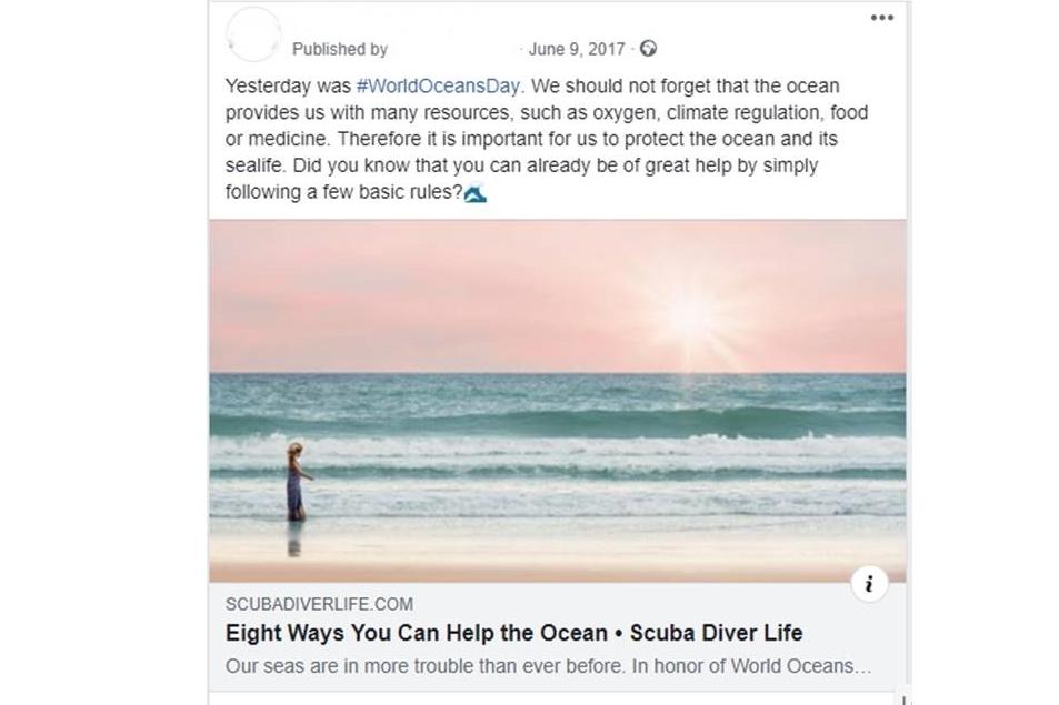 Dive Shop Curation Post
